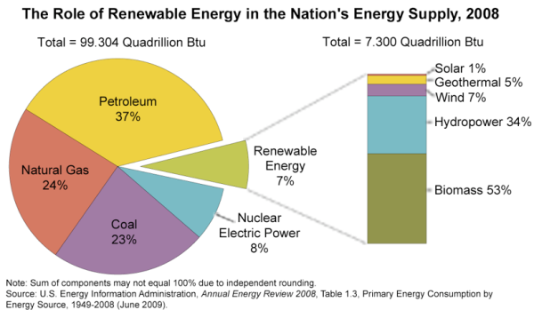 The Role of Renewable Energy in teh Nation's Energy Supply, 2008