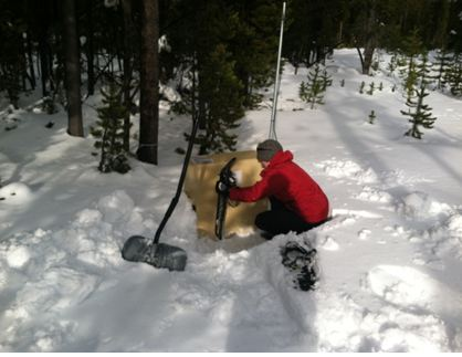 Digging out! Three feet of snow buried this seismic monitoring station in January. We uncovered it just to check on things, and all was well. Equipment at our field site is designed to function over a wide range of temperatures, and so far it's held up very well this winter.